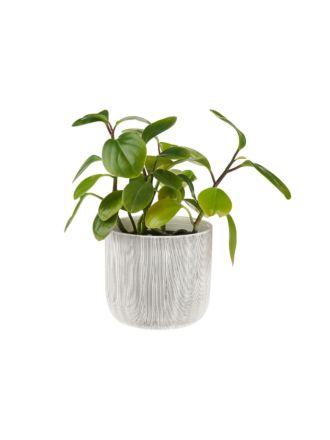 Taupin Planter Pot 16.5cm