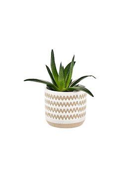 Dawn Planter Pot 11cm