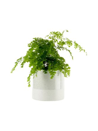 Caitlin Green Planter Pot 17cm