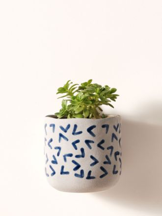 Paterna Blue Arrow Planter Pot 15cm