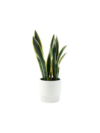 Rivera Grey Planter Pot 19cm